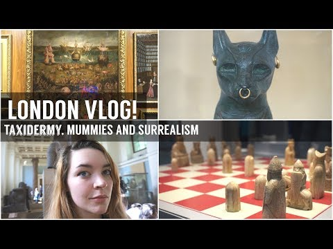ASMR Come with me to London! Taxidermy, Ancient Egypt and Pot Burials [Pandora Travels]