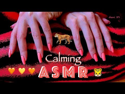 🐯 It's TIGER DAY! 🐯 🎧 Soft ASMR with gentle TINGLES! ✶ Scratching SOFTNESS Fabric ✦