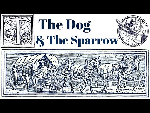 ✦ ASMR ✦ The Dog and The Sparrow ✦ Grimm's Fairy Tales ✦ Whispered ✦ Storytelling