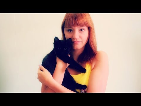 ASMR Cat Facts. Meet All Of My Cats and Kittens! Pets Add Life. Mouth Sounds, Whisper