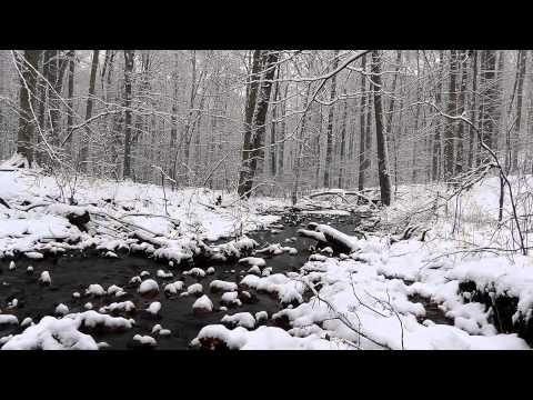 Relaxing Nature Journey & Walkabout #5 (Narrated) - Winter 2012 - Snow Sounds - Pennsylvania Woods