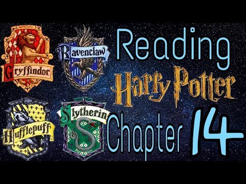ASMR - Harry Potter and the Philosopher's Stone // Chapter 14
