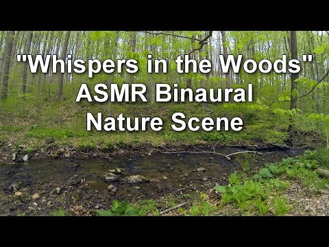 """""""Whispers in the Woods"""" - ASMR Binaural Nature Scene for Relaxation and Sleep"""