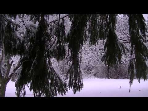 Ice Ice Baby:  Binaural ASMR Snow and Ice Sounds.