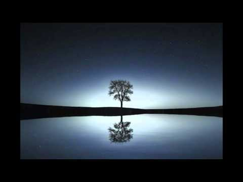 Softly Spoken Guided Relaxation: Forest Moonlight Walk