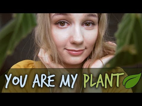 ASMR You Are My Plant! 🌿 Personal Attention Roleplay with Head Massage