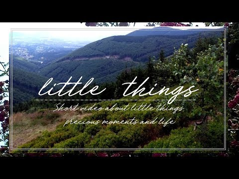 ✨Little things – Relaxing video about little things, precious moments & life
