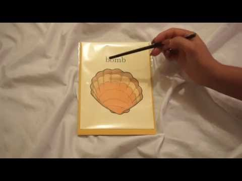 Slow Whispering, Tapping, Tracing & Page Turning | Lily Whispers ASMR