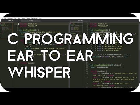 ASMR Ear to Ear Whisper About C Programming for Relaxation (Layered Typing Sounds) Pt. 6