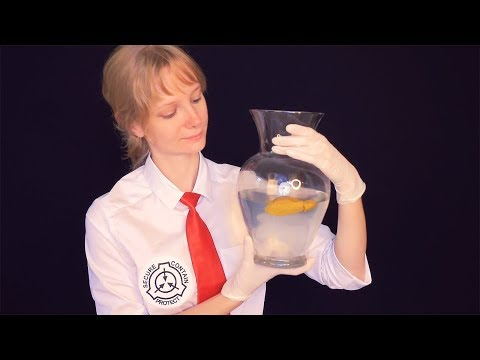 ASMR SCP Foundation Classified Video